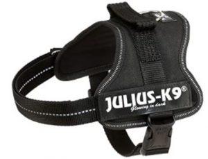harnais noir julius