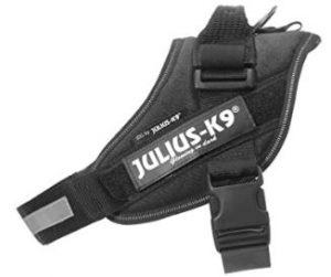 Julius K9 noir