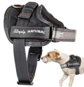 harnais personnalisé pour chien