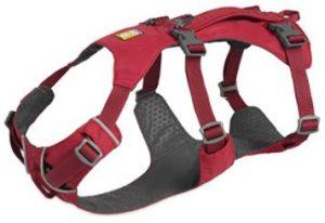 harnais ruffwear sport canin