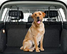 séparation de sécurité chien voiture
